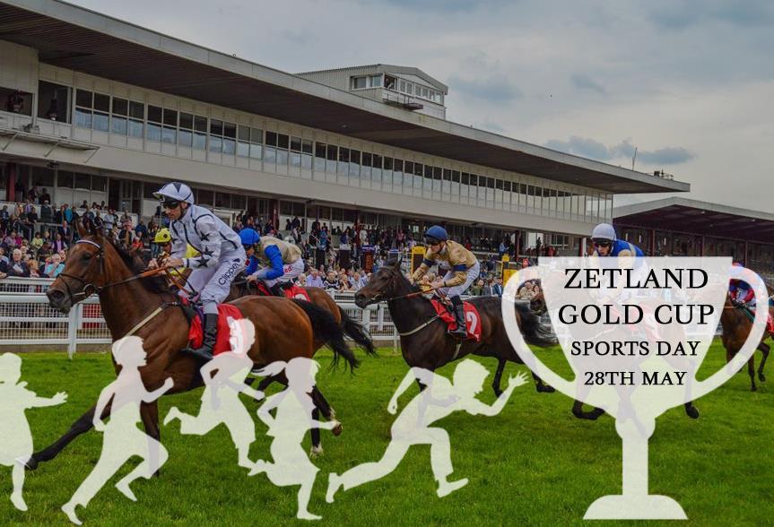 Redcar Racecourse : Zetland Gold Cup Winner 2008